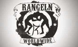 2013-04 Rangeln Internethype virales-video