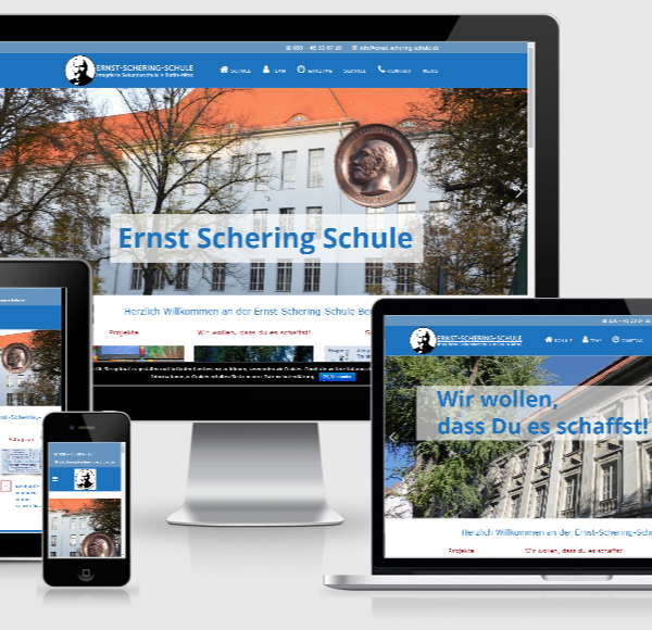 Wordpress Webdesign Programmierug - Ernst-Schering Schule in Berlin Mitte